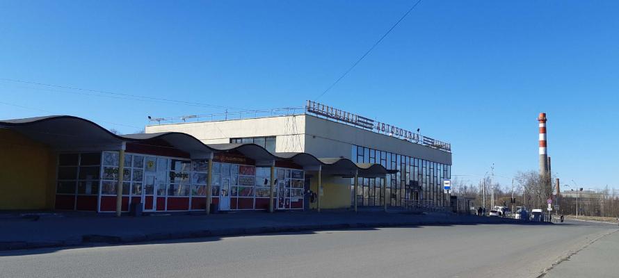 Добраться из Петрозаводска в Санкт-Петербург на автобусе можно за 500 рублей