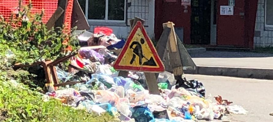 Активисты призывают надзорные ведомства обратить внимание на проблему с мусором в Петербурге